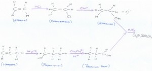 organic-pathway